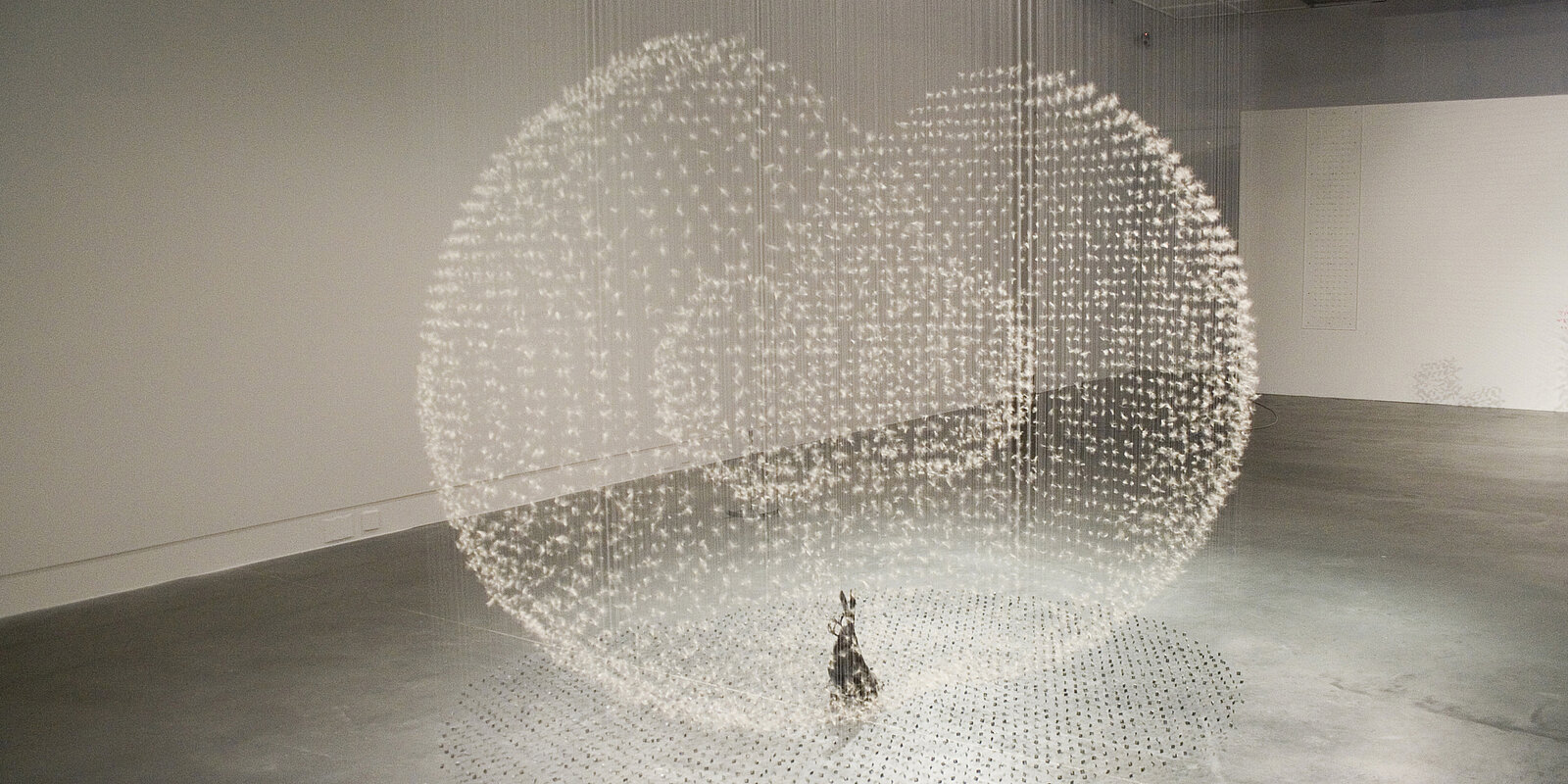 Installationsansicht Claire Morgan, Gone to Seed, 2011